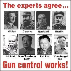 guncontrol works